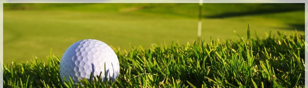 golfbal-in-gras-banner